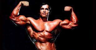 Schwarzenegger's time
